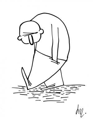 La louse