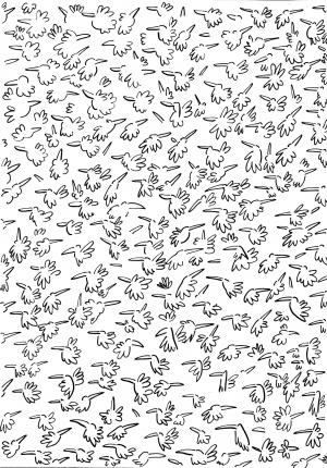 Des tas d'oiseaux -1